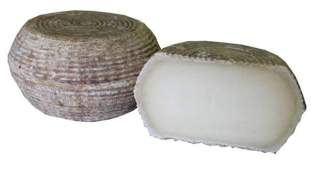 PECORINO SARDO -Senza lattosio-