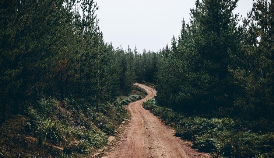 coronavirus: strade deserte