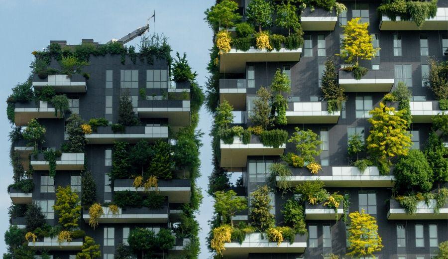 Tree City: Milano, Torino e Mantova sono le 3 città verdi.