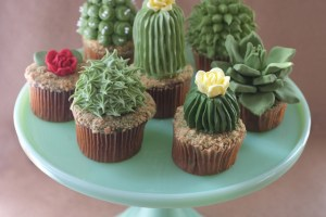 DIY: House Plant Cupcakes