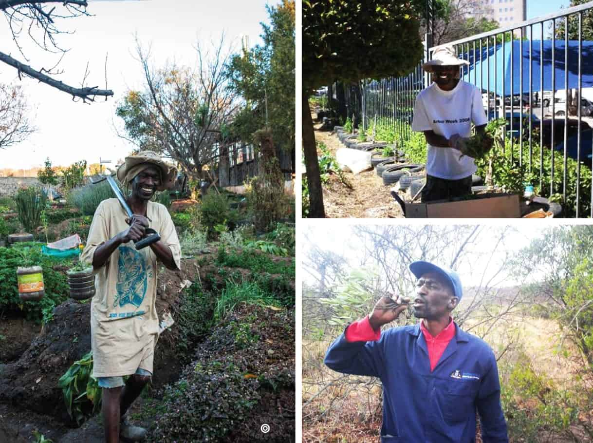 Starting with an assassination attempt and exile from his beloved town, Solly Tladi is now known as a pioneering agri-preneur, changing hundreds of lives.