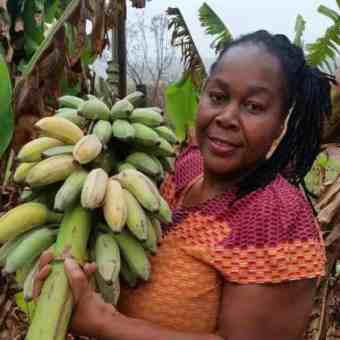 Sithole supplies her fruit and vegetables to stores like Kula Organics and Jackson's Real Food Market.