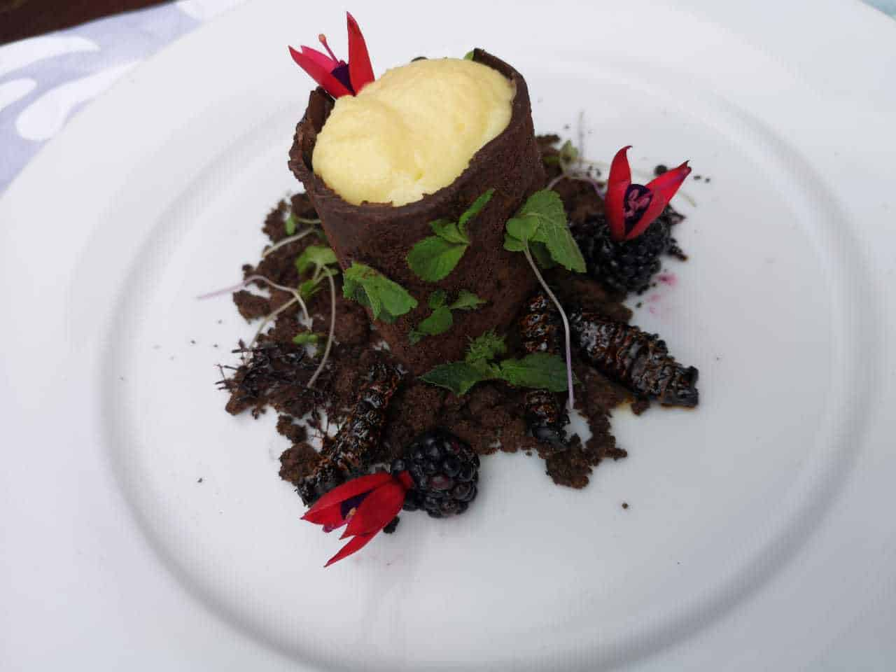 Chef Unaty Daniel's Mopane Worm Chocolate Tree and Ginger Crumble Soil recipe