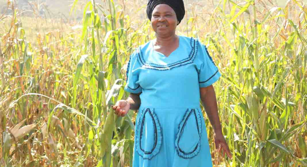 Nokuthula Khoza, is a small scale farmer from Bergville in KwaZulu-Natal.