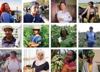 According to Professor Amanda Gouws up to 200 million tons of agricultural produce is produced in Sub-Saharan Africa. Two-thirds of this is produced by small and subsistence farmers and women make up over 65% of the producers.