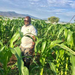Tumelo Siliga never wanted to farm. His heart was set on politics, but when tragedy struck, Siliga took up the mantle and achieved his father's dream.