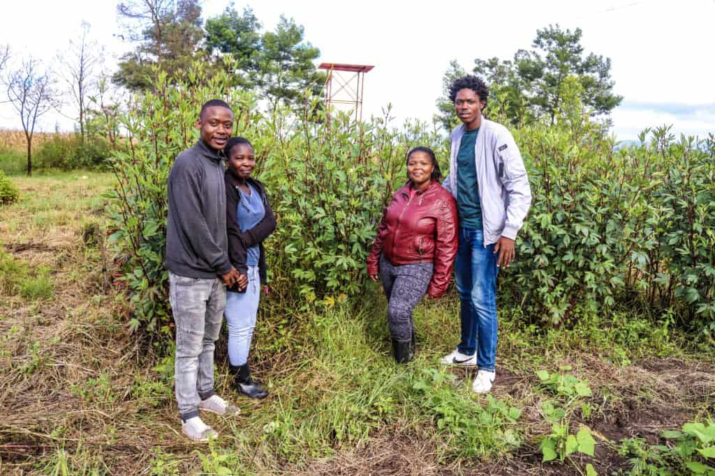 The Wana Johnson Development Project in Taweni, Eastern Cape is schooling women and youth in food and nutrition security while raising awareness on climate change.