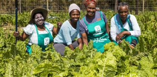 Eastern Cape NGO, CATCH Projects is giving 110 women between the ages of 24 and 90 the opportunity to plant and harvest vegetables for their families.