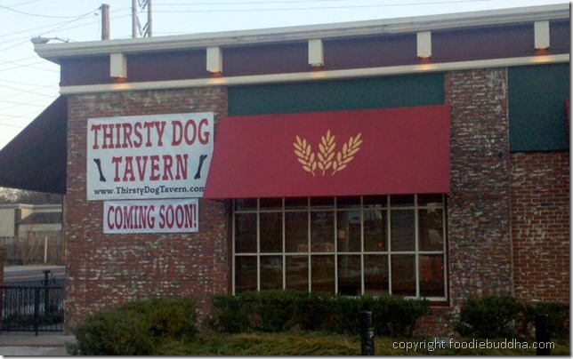 thirsty dog tavern