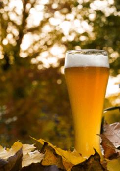 pint autumn