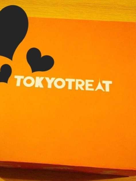 Tokyo treat subscription box sweets