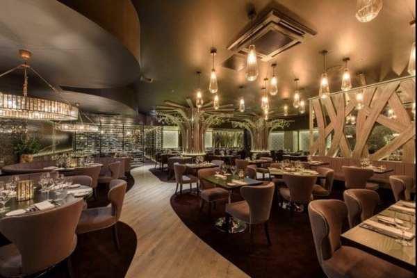 Gaucho Argentinian steak Edinburgh new opening