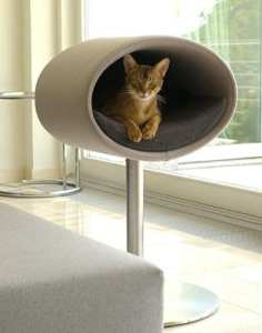 Christmas gifts for cats luxury quirky decadent
