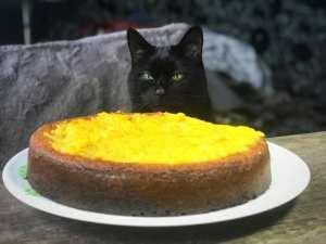 Orange and almond cake gluten free recipe