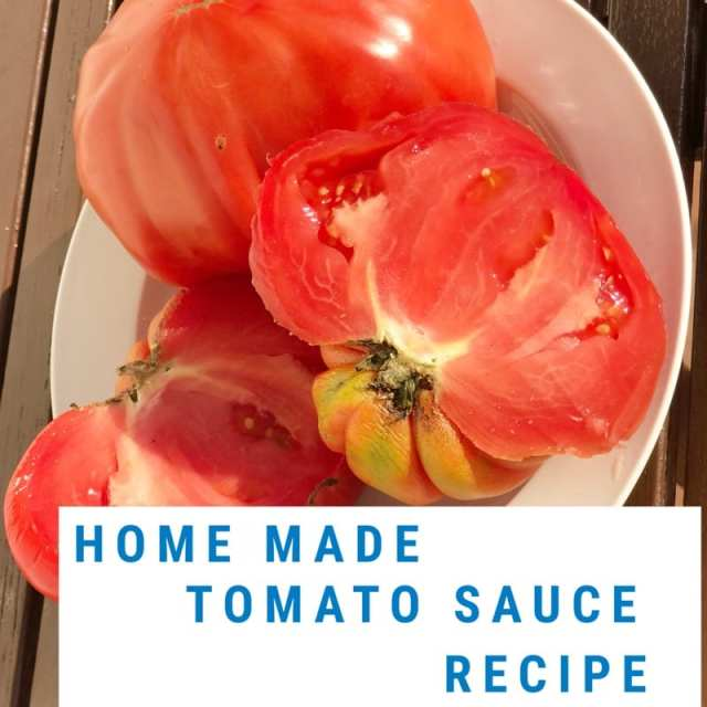 Foodie explorers tomato sauce recipe