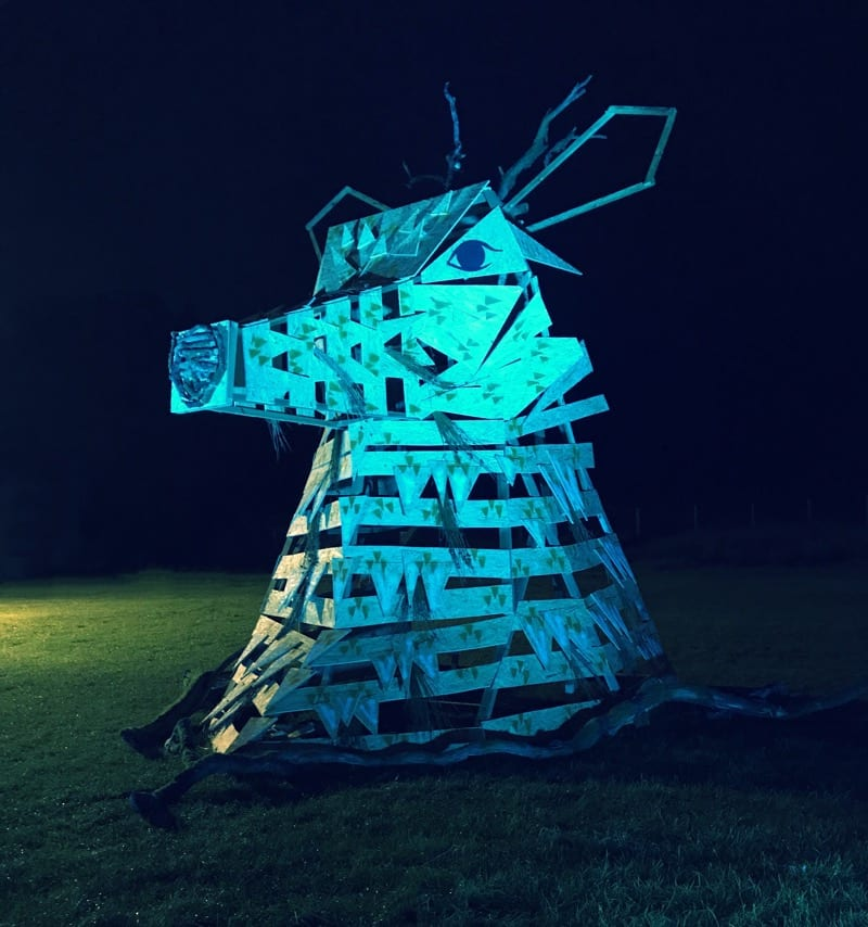 Electric Fields Music Festival Galloway Scotland