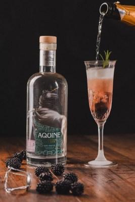 Blackberry fizz cocktail Lidl aquine gin