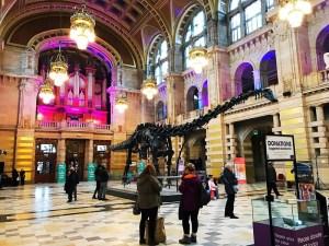 Dippy diplodocus Glasgow kelvingrove Museum and Art Gallery