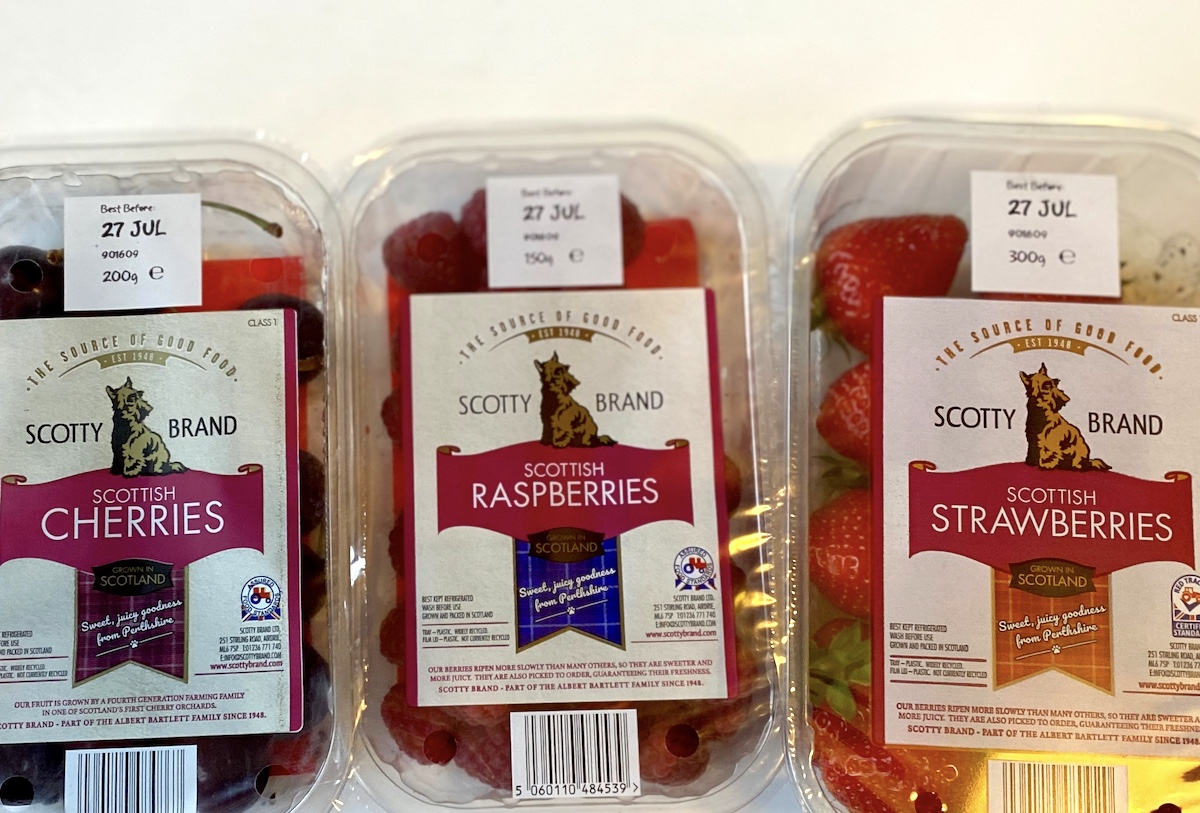 scotty brand fruits