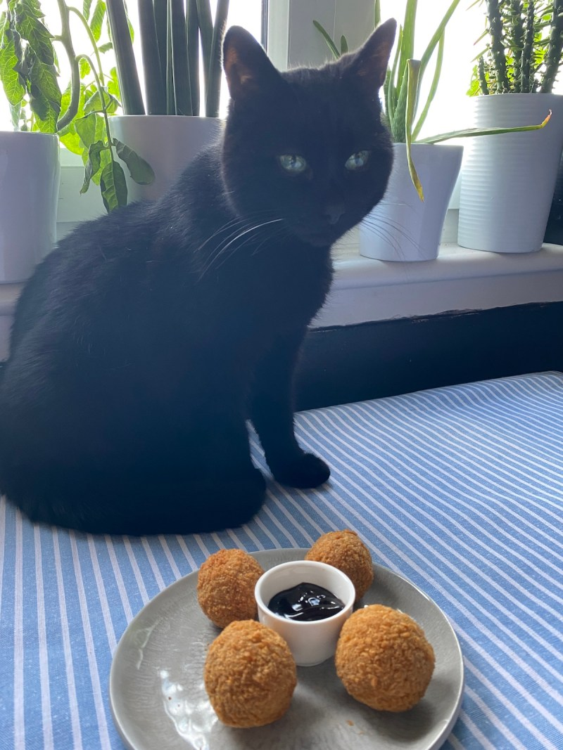 fred sitting with duck bon bons from Red Onion