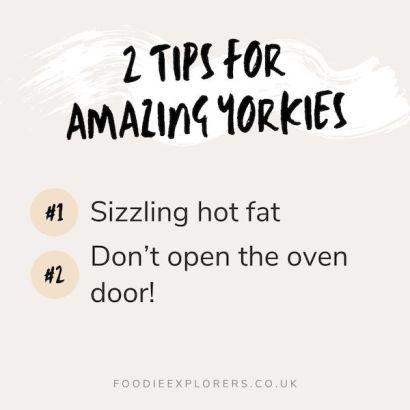 tips for amazing yorkies