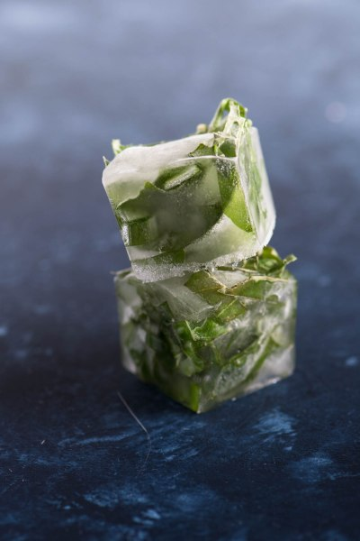 Kitchen Tips:  15 Brilliant Uses for Ice Trays