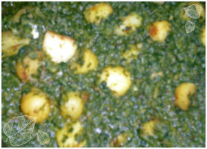 Baby potato in spinach gravy