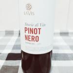 """Pinot Nero Lavis """"storie di vite"""" e il suo luogo ideale…"""
