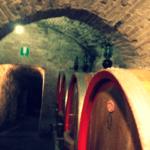 Alla scoperta del vino Nobile di Montepulciano
