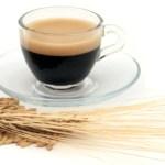 IL CAFFE' D'ORZO