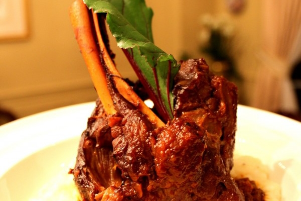 Braised Lamb Shanks and Celriac Puree2