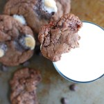 Chocolate cookies with glass of milk.
