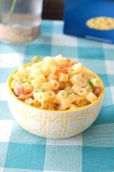 Bowl with tubular pasta.