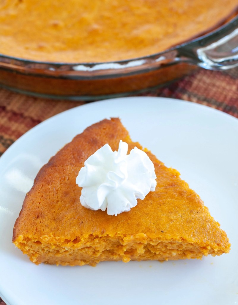 Piece of crustless pumpkin cheesecake with whipped cream on top