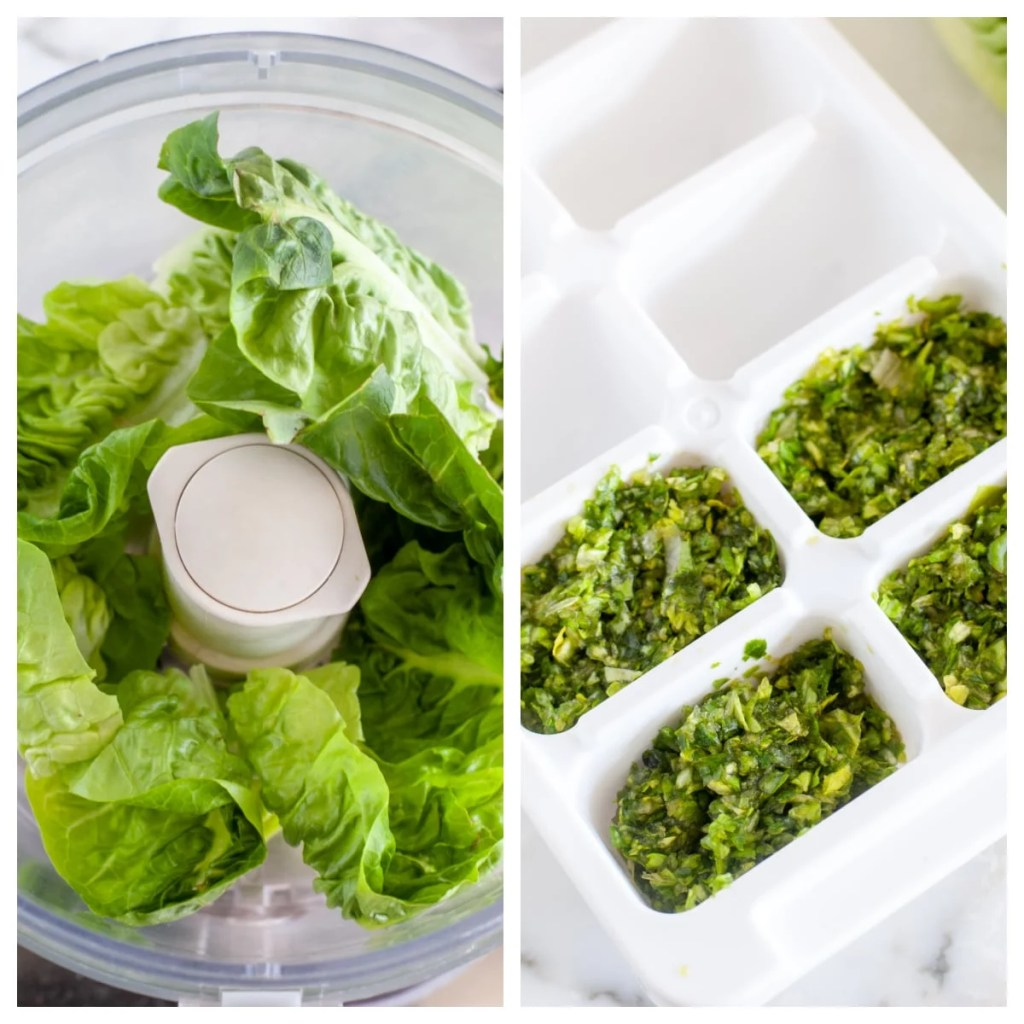 Lettuce leaves in food processor. Chopped lettuce in ice cube tray.