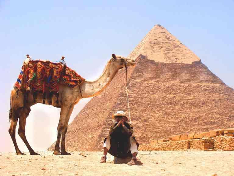 Kamel vor Pyramide