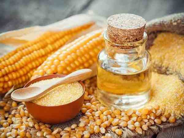 Corn essential oil bottle, corn groats, dry seeds and corncobs on wooden rustic table. Selective focus