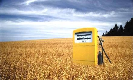 Biocarburanti: Scarti del vino al posto della benzina
