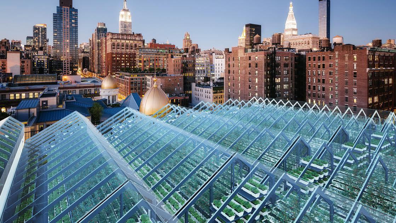 Edenworks : l'urban farming cresce ancora a NY