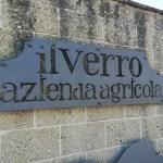 """Alla scoperta dell'azienda vinicola """"Il Verro"""""""