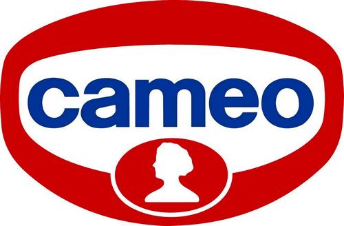 CAMEO LANCIA I FERMENTI PER YOGURT