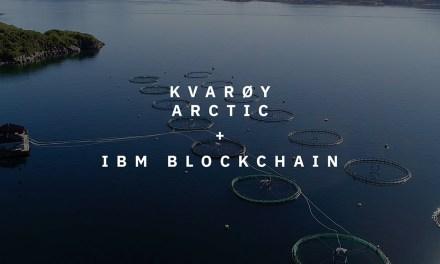 Un'industria ittica più sostenibile è possibile: il progetto di IBM nelle isole Kvarøy