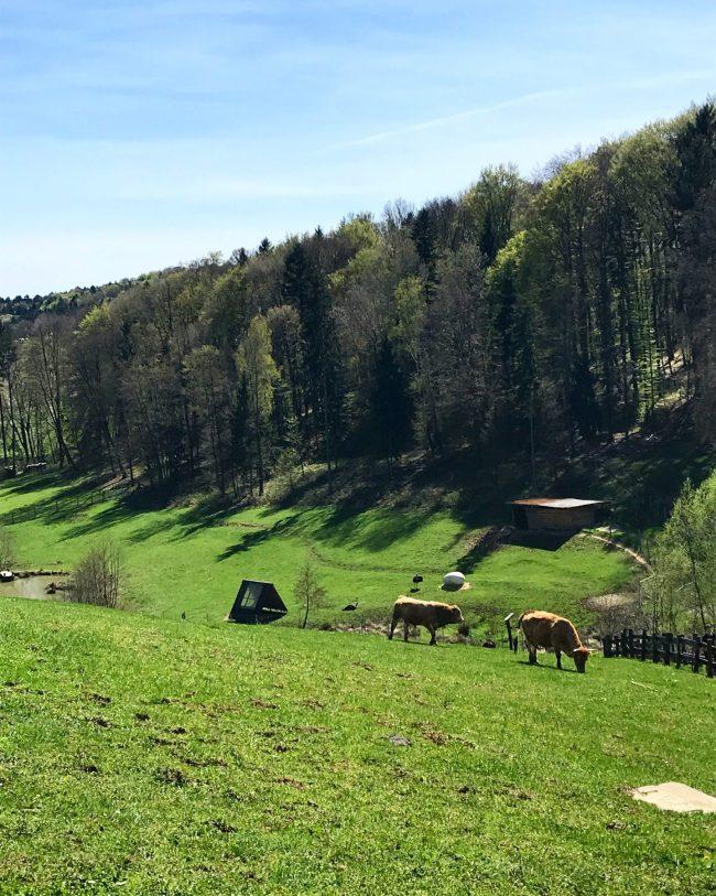 Zotter Farm