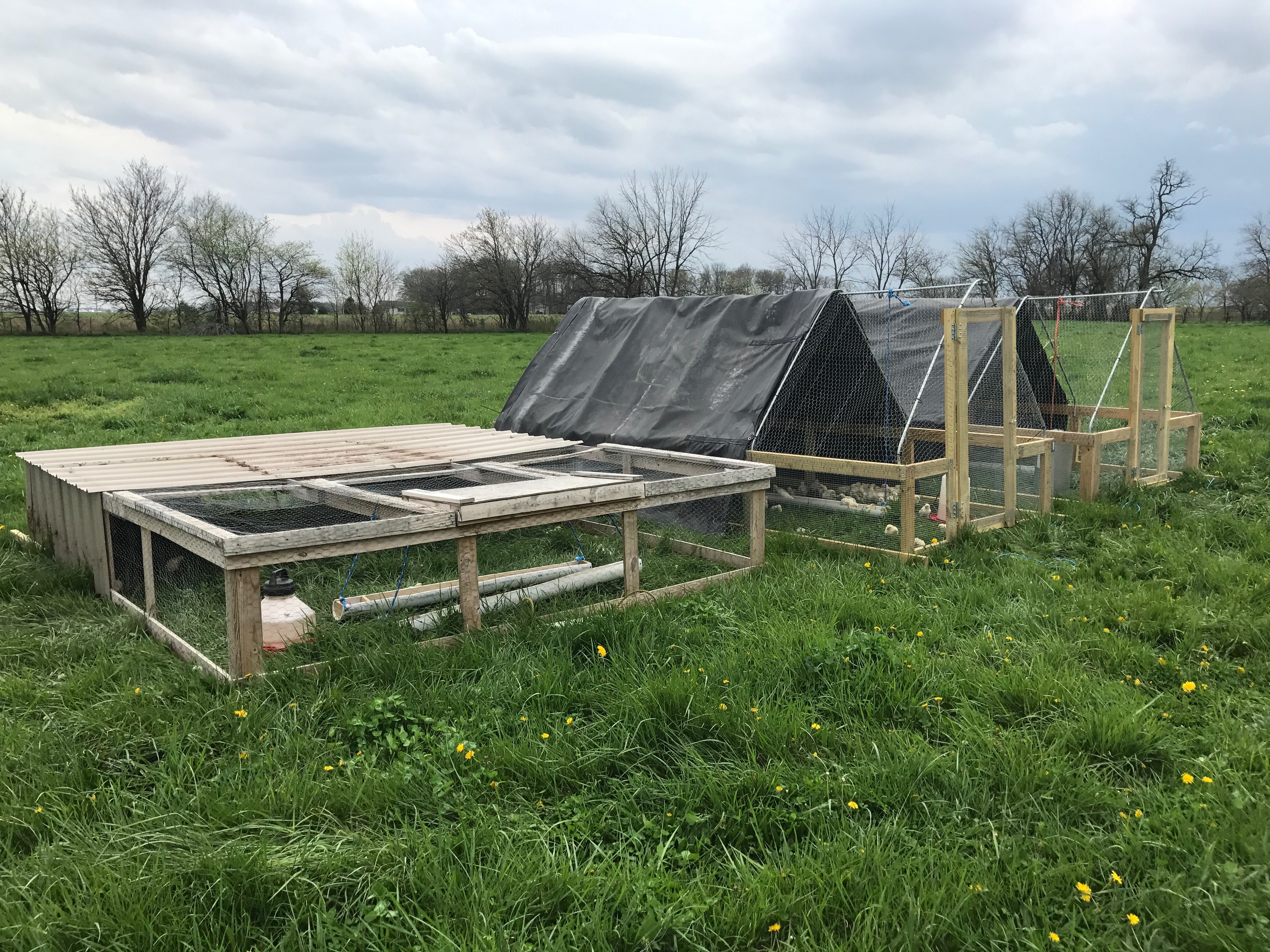 The Chicken Tractors are on the move! – FoodRaisedRight