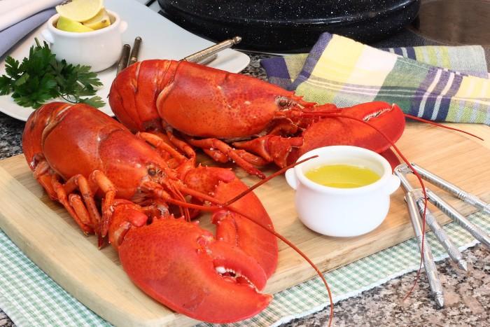 lobster_main