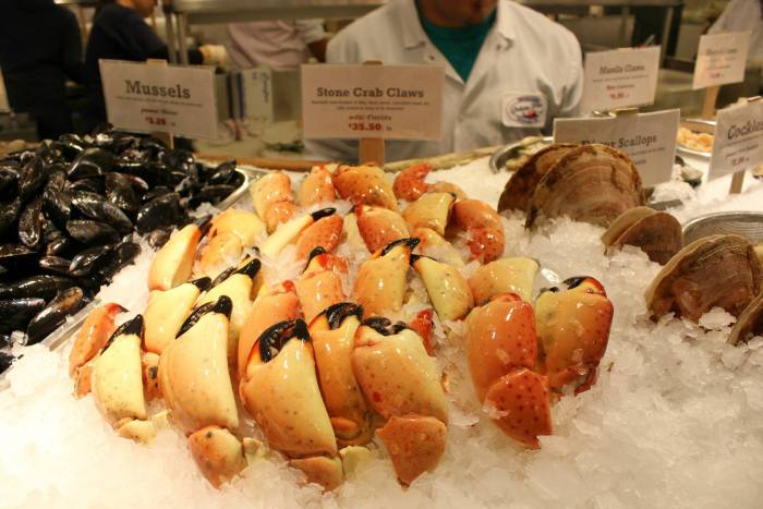 Here Are 9 Fun Facts About Stone Crabs, Currently In Season