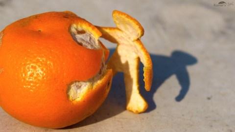 Citrus Peels Clean Wastewater