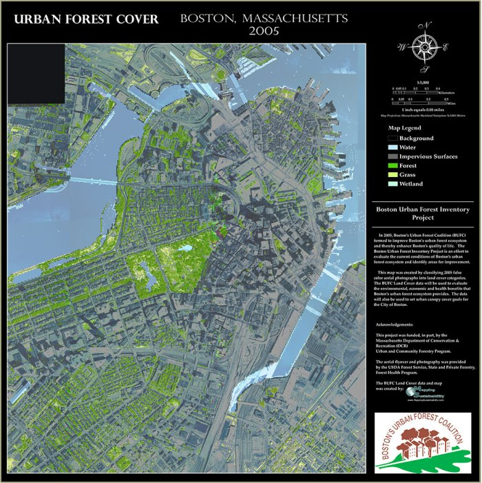 Castronovoboston_forest_cover_map_downtown150dpiSmall