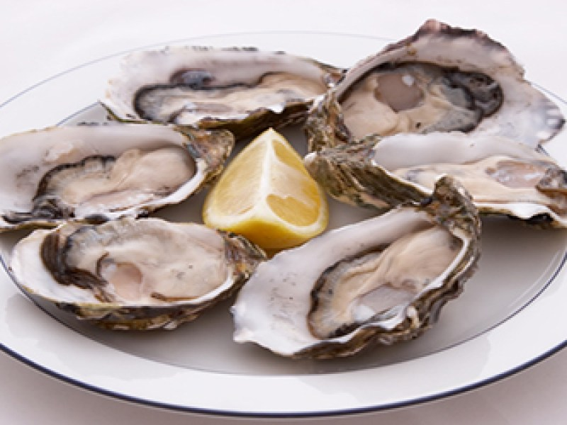 Norovirus oyster outbreak