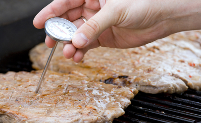 http://www.dreamstime.com/stock-photo-checking-meat-image3197530